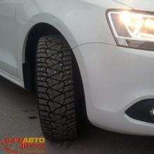Шины DUNLOP IceTouch (195/65R15 91T) шип dn7, Фото 4