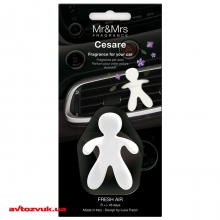 Ароматизатор Mr&Mrs Fragrance CESARE BLISTER CAR FRESHNER WHITE FRESH AIR: Купить за 246 грн